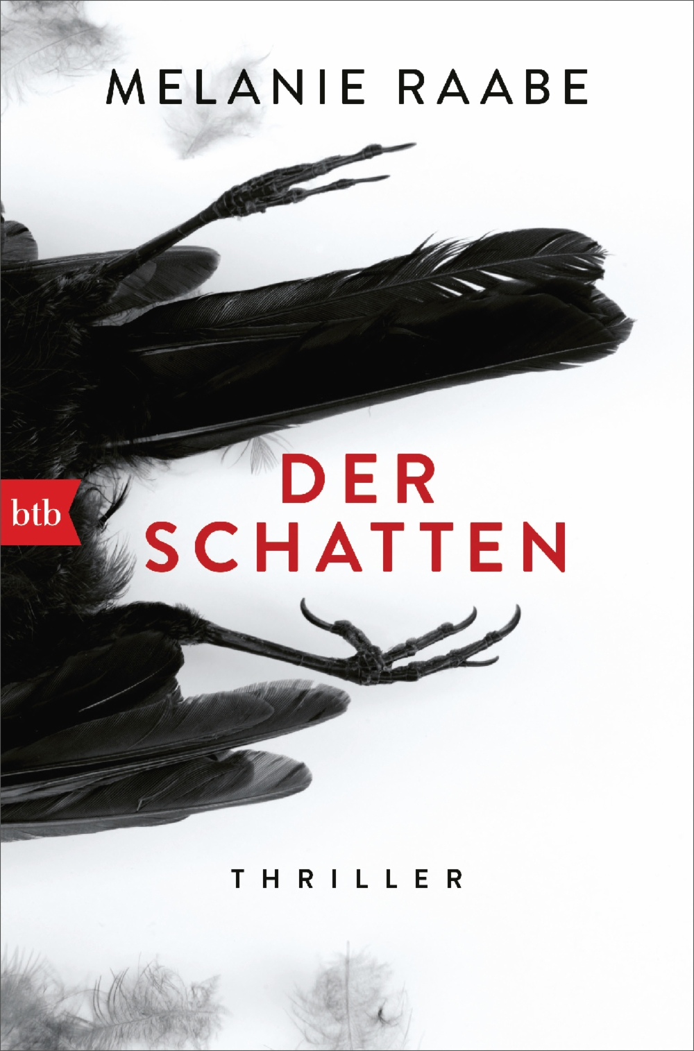 melanieraabe_schatten_cover.do